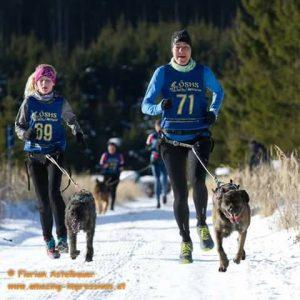 20171210Schlittenhunderennen01